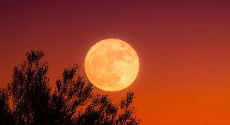 خسوف جزئي للقمر يوم 16 جويلية 2019-التيماء