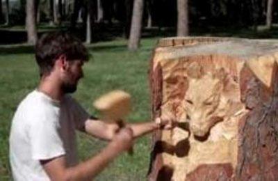 نحات إيطالي شاب يبلغ من العمر22 عاماً يحول جذوع الأشجار إلى تماثيل ومنحوتات فنية تجذب السياح -التيماء
