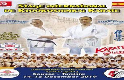 Stage de kyokuschinkai à Sousse-التيماء