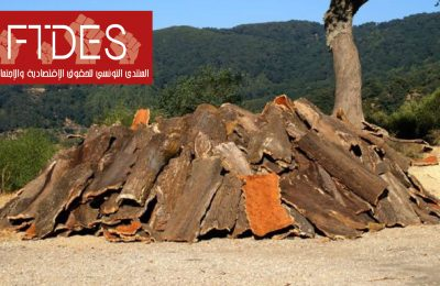 من أجل إنقاذ رئة الأرض: غابات تونس تستغيث-التيماء