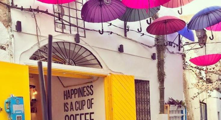 مقهى المظلات يعيد للكتاب رونقه -التيماء